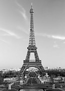 Eiffel tower Paris - fototapeta FT386