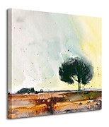 New Forest Study - Obraz WDC97036