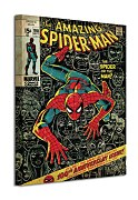 Spiderman (100th Anniversary) - Obraz WDC94597