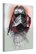Star Wars: The Last Jedi (Captain Phasma Brushstroke) - obraz WDC100197